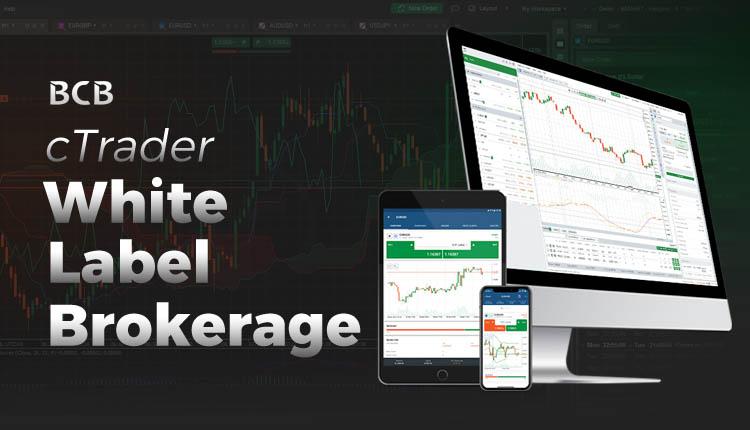 Best white label forex broker